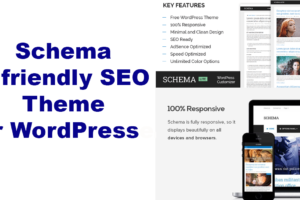 schema-theme-review