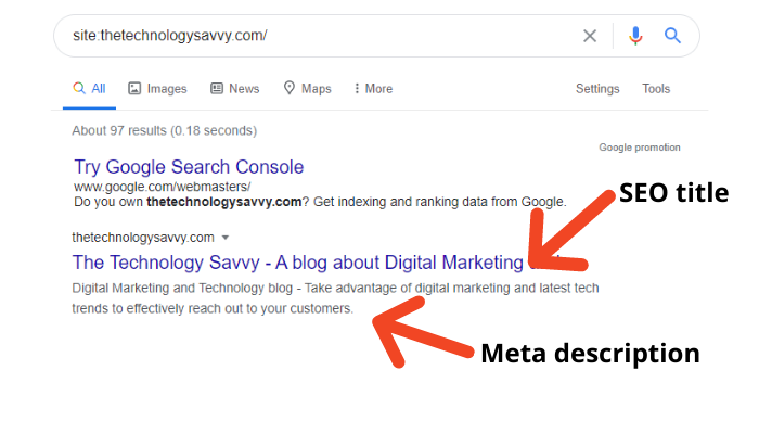 the technology savvy serp result