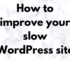 The Technology Savvy How to improve your slow WordPress site