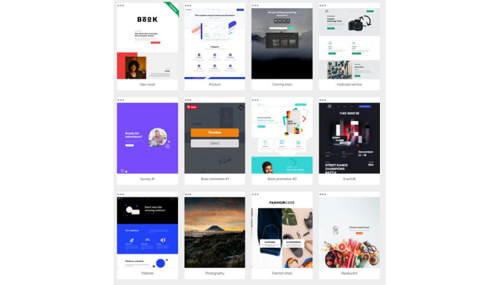the technology savvy landing pages mailerlite