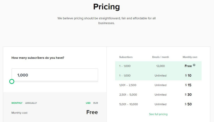 the technology savvy mailerlite review pricing